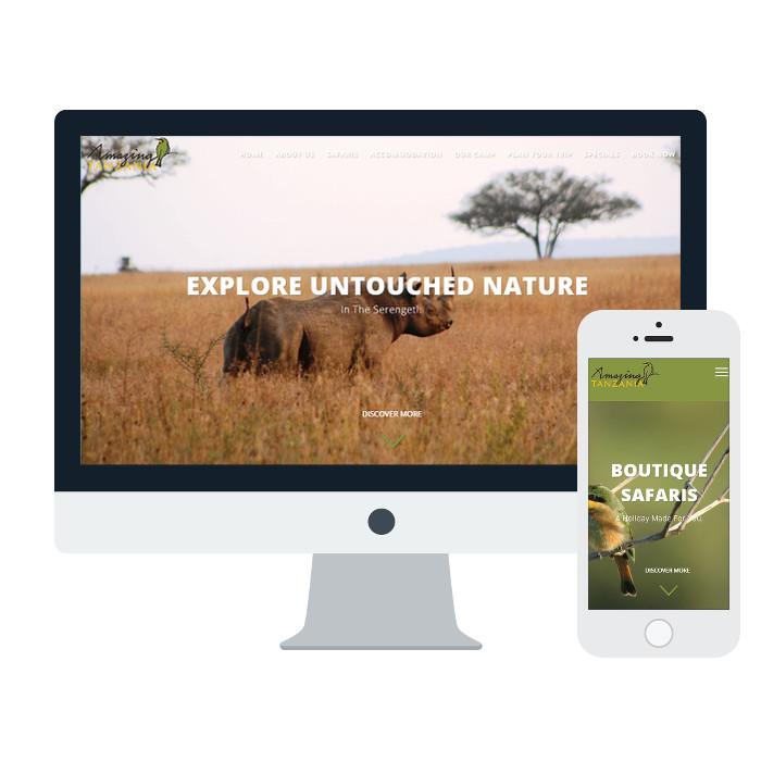 website design company south africa